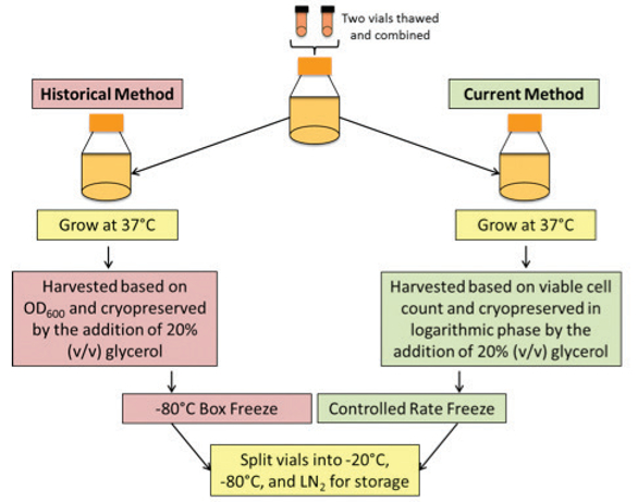 Improving Microbial Cryopreservation Methods American