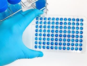 Anti-CTLA-4 Antibody CS1002