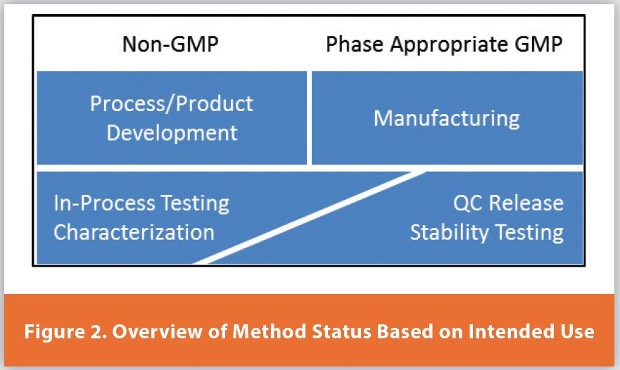 An Efficient Analytical Development Strategy for Rapid