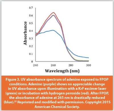 UV absorbance spectrum of adenine exposed to FPOP conditions