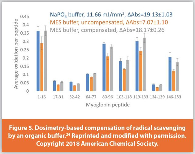 Dosimetry-based compensation of radical scavenging by an organic buffer.