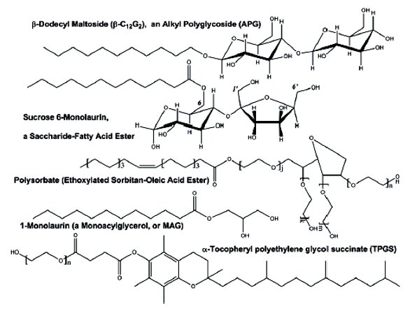 Bioprocessing Methods to Prepare Biobased Surfactants for