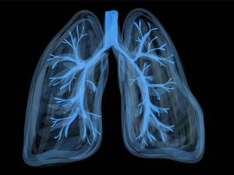 Bayer, BWH, Massachusetts General Open Joint Lab for Lung Diseases Research