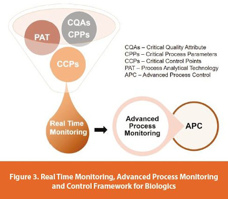 Real Time Monitoring, Advanced Process Monitoring and Control Framework for Biologics
