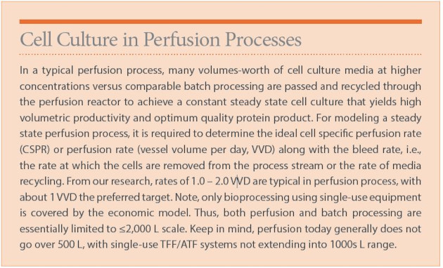Cell Culture in Perfusion Processes