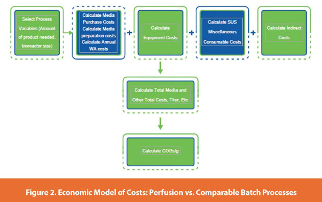 Economic Model of Costs: Perfusion vs. Comparable Batch Processes